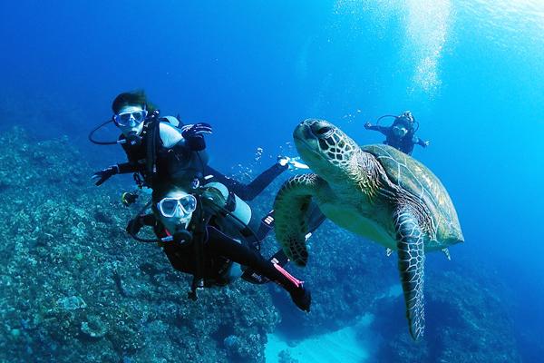国際ダイビングライセンス取得講習